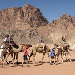 Jordanie-sept-2019-categorie-wildlife-DSC02751.jpeg