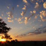 Botswana-okavango-1.jpg